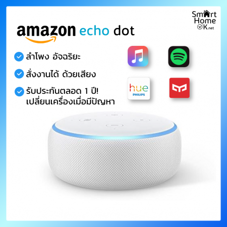 Echo Dot without Clock