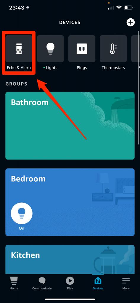 Choose Echo Dot